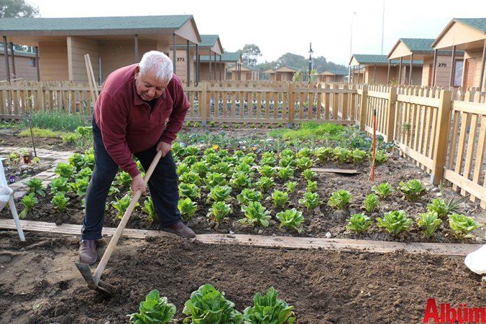 Antalya Büyükşehir Belediyesi'nin hizmete açtığı emeklilere özel hobi bahçeleri yoğun ilgi görüyor.