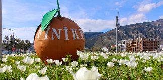 Antalya Büyükşehir Belediyesi, Finike'ye erkenden baharı getirdi. Büyükşehir, Finike sorumluluk alanı içerisinde bulunan cadde, sokak, park, bahçe ve orta refüjlerde yaptığı çalışmayla toplam 74 bin çiçeği toprakla buluşturdu.